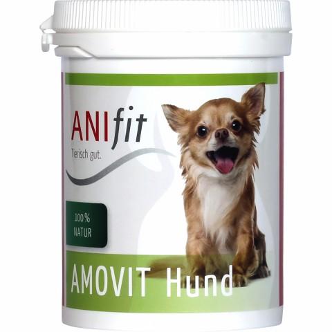 Amovit Hund 100g (1 Stück)